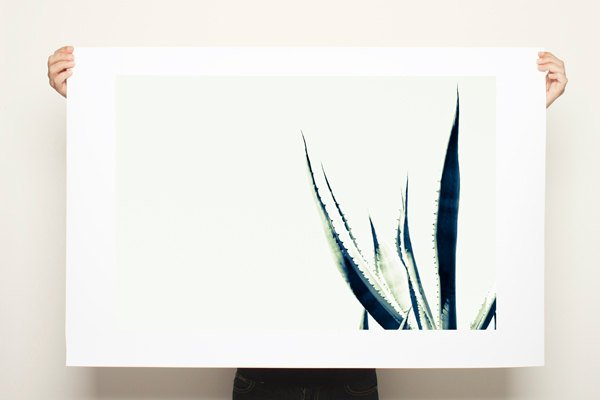 Large Black and white print