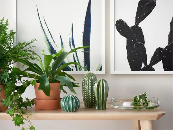 agave and Cactus Print